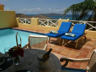 .A Perfect Getaway...ocean views, heated pool & more ...Lime Tree!