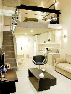 Modern and spacious apartment that is luxuriously equipped with all the amenities