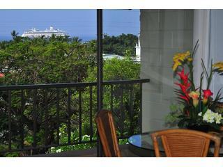 Kalankai Oceanview 1BR: HDTV,WiFi - Book now!, Kailua-Kona