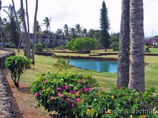 View of Prince Kuhio from adjacent Park