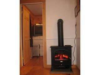 Electric Wood Stove adds cozy, romantic atmosphere