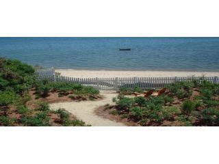 View of Beachside Garden from the Deck