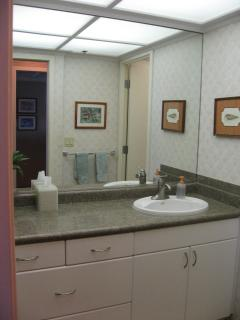 Whaler 1063 Bathroom Sink Area