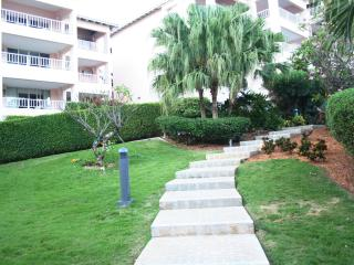 Pathway from the condo to the pool & beach