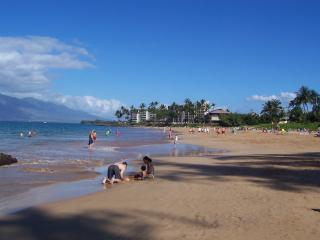 NOW ACCEPTING 2020 RES. Across from Charley Young Beach, one of Maui's Best !!!!, holiday rental in Kihei