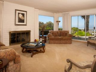 Formal living room with gas fireplace and patio with views