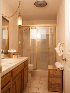 Main floor bath with step in shower