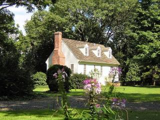 Here's a backyard view of the Cottage on a summer day, with pink spider flowers in the foreground.