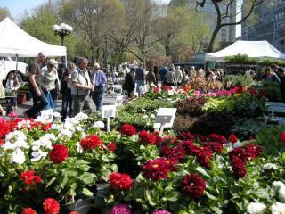 The Best Farmer's Market in Manhattan at Union Square