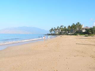 Kamaole Beach Park 2