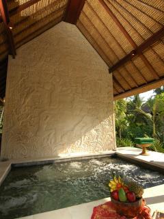 Villa Kanti Ubud Bali - Jacuzzi