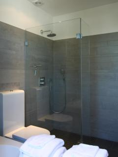 designer bathroom with separate rain shower