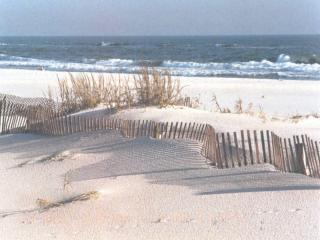 AUGUST IS A GREAT TIME TO BE AT THE BEACH!!, Gulf Shores