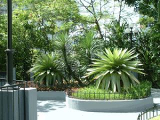 Hotel Jardín de la selva