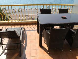 pic terrace table & sunlouger