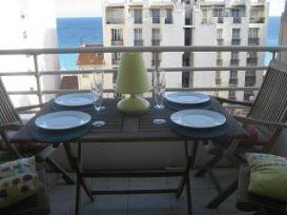Top floor 2 bedroom apartment  100 M from  Promenade des Anglais / beach.