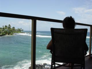 Kauai condo: Relax as the waves roll by. See whales in winter and turtles everyday. 305 Kuhio Shores