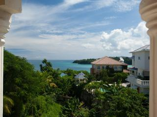Free Excursion: Luxury Ocean-View Villa W/Chef, Driver & Butler, Private Beach!