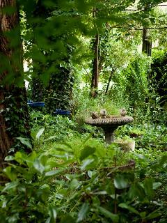 Bird bath set in private front garden