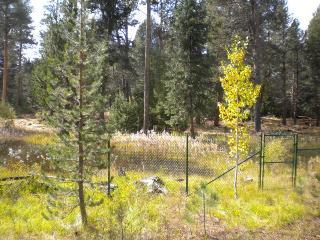 2853 Springwood Family Retreat