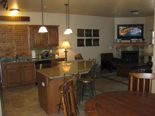 Fireplace on, 50 inch HDTV Plasma