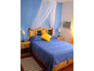 1 Queen Bedroom