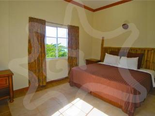 Bamboo Chute - Apartments - Bequia