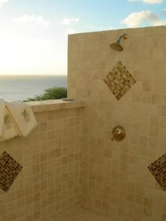 Double headed outdoor shower at Super Master B/R with stunning day and night views & very private!