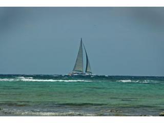 Hacer una excursión en el catamarán más grande de la Riviera Maya, visto aquí pasando cerca de la casa