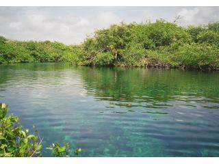 5 minutos a pie a Manatí Cenote Casa Caribe alma en Tankah cerca de Tulum