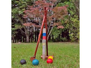 Anyone up for a game of Croquet...
