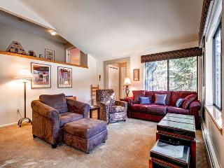 Park Forest 32 Townhome Hot Tub Breckenridge Vacation Rental