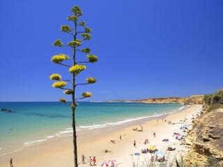 Luxury apartment  in Conil - Sea views all rooms