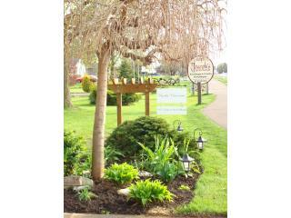 By the Vines 3 Bedroom 2 Bath Wine Country Getaway
