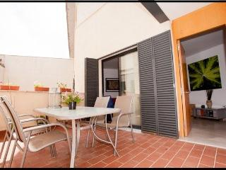 2Br Terrace Patio, Wifi, Parking(HEART of SEVILLE)