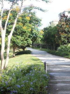 Vista Cay's lighted walkway is wonderful for a stroll or even a bike ride using our 3 bicycles.