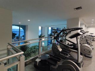 Professional fitness center