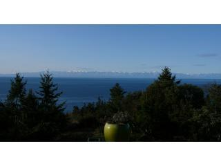 View of Haro Strait, Victoria BC, Olympic Mtns. from the deck
