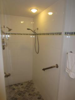 Master bath step down shower for 2