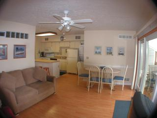 Lake Erie Pristine  Waterfronts Condo Sandy Beach