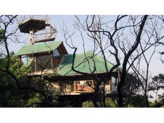 The Heritage Machan - A Tree House in Lonavala, Lonavla