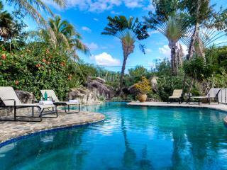 Bigger Splash, Private Villa-The Baths w/Concierge