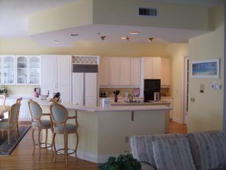 Gourmet kitchen with wrap-around seating