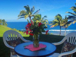 Sealodge J4: Panoramic oceanfront views, tranquil ground floor setting, Princeville