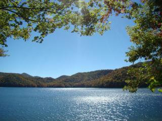 Lakefront 4/3.5 Home,Gated,Dock,Kayaks, Canoe,Wifi, Nantahala Township