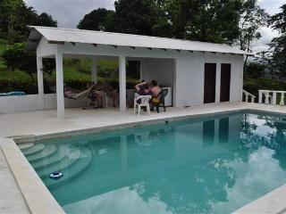 Shotover Gardens Estate-Villa with Pool