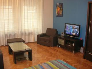 Blue  Flat Danube Vaci, vacation rental in Solymar