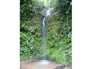 35 foot Waterfall on property