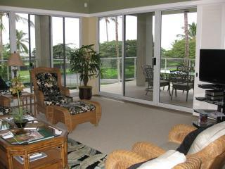 Living room look toward lanai