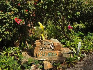 The grounds of Perelandra have been landscaped with many kinds of palms and tropical flowers.